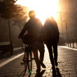 Young couple walking down the street with a bicycle at sunset. — Stock Photo #38355113