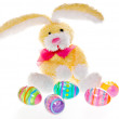 Easter Bunny with Big Ears and Eggs, Isolated - Stock Photo