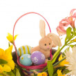 Easter Bunny and Colorful Eggs in Nest of Real Flowers, Isolated - Stock Photo