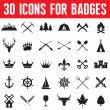 30 Icons for Badges and Different Design Works — Stock Vector #40621225