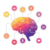 Human Brain - Colored Polygon Infographic Illustration with Icons — Stock Vector
