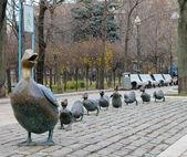 Una bandada de patos — Foto de Stock