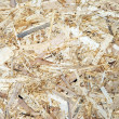 OSB - Oriented Strand Board (Texture) — Stock Photo #22182745