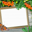 Frame with bunch of mountain ash and butterfly — Stock Photo