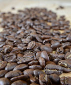 Coffee beans with selective focus — Stock Photo