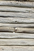 Old logs — Stock Photo