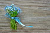 Forget-me-not — Stock Photo