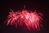 фестиваль фейерверков — Стоковое фото