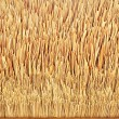 Thatch roof texture — Stock Photo