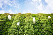 Vertical garden — Stock Photo