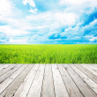 Wooden pier with grass field and blue sky background — 图库照片
