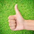 Thumbs up on green grass — Stock Photo