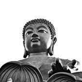 Tain tan or big Buddha statue in Lantau island - Hong Kong — Stock Photo