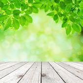 Groene natuurlijke abstracte achtergrond — Stockfoto
