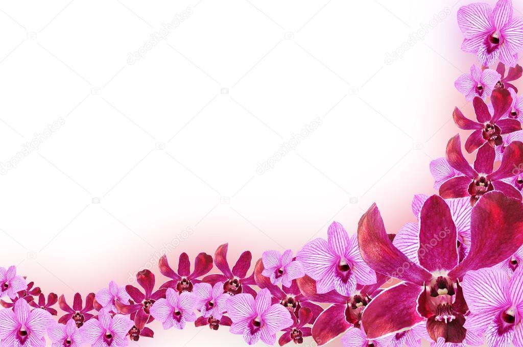 Flower Line Drawing Stock Images RoyaltyFree Images