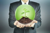 Businessman holding green sapling with soil inside the sphere — Stock Photo