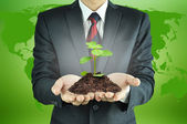 Businessman holding green seedling with soil — Stock Photo