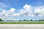 Beautiful roadside view with green nature and cloudy blue sky — Stock Photo