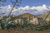 Cortijo Los Frailes — Stock Photo