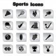 Stock Vector: Set of Sports Icons