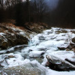 Stock Photo: Icy waters