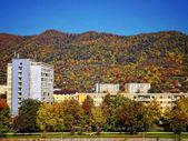 Jesień krajobraz — Zdjęcie stockowe