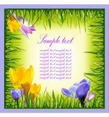 Banners with colorful spring flowers and grass. — Stock Vector