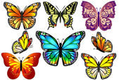 Set of Colorful Realistic Isolated Butterflies. — Stock Vector