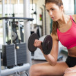 Girl working hard at gym — Stock Photo #26283093