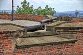 Historical cannons — Stock Photo