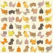 Set Of Kittens. Editable Vector Illustration — Stock Vector