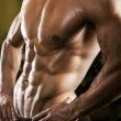 Stock Photo: Muscular male torso