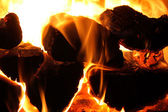 Glowing wood logs a fireplace — Stock Photo