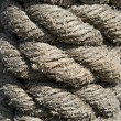 Boat rope texture — Stock Photo