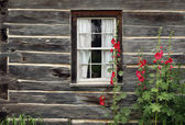 Window of an old wooden house — Stock Photo