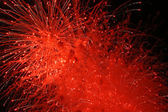 Red fireworks explosion — Stock Photo