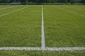 White boundary lines of football playing field — Photo