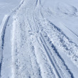 Snowmobile tracks in the snow — Stock Photo #21845589