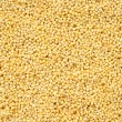 Stock Photo: Millet background