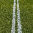 Stock Photo: Double boundary line of playing field
