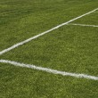 Emerald grass of a playing field - Stock Photo