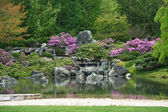 Flowering Japanese garden — Stock Photo