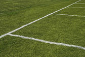 Emerald grass of a playing field — Stock Photo