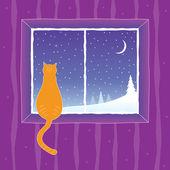 Cat looking into the window — Vecteur