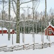 Swedish winter landscape with red wooden houses — Stock Photo