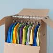 Постер, плакат: Colorful clothing in a wardrobe box for easy moving