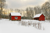 Old red houses in a winter landscape — Stock Photo