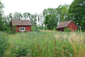 Scandinavian summer, traditional old red houses — Stock Photo