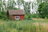 Traditional Swedish red house in summer landscape — Stock Photo