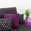 Sofa with colorful cushions and green plant — Stock Photo